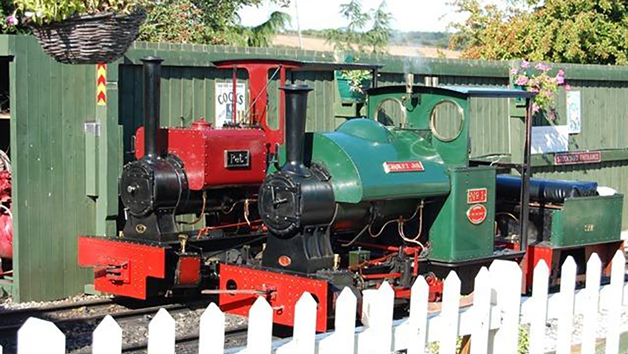 Steam Train Driving Taster Experience at Sherwood Forest Railway for One