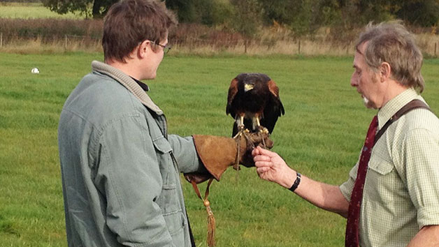 Three Hour Birds of Prey Experience for Two