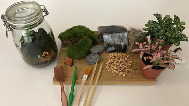 90 Minute Introductory Mini Ecosystem Workshop with Prosecco at Botanical Boys