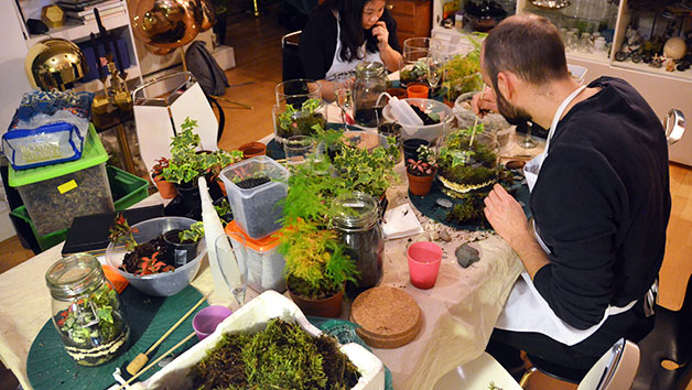 Two Hour Advanced Terrarium Workshop at Botanical Boys for One