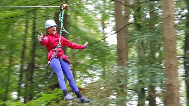 Tree Top Trials The Explorer Experience for an Adult and a Child