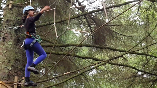 Tree Top Trials The Hero Experience for an Adult and a Child