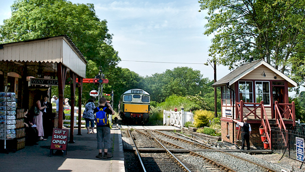 Diesel Train Cab Ride with Kent and East Sussex Railway for One
