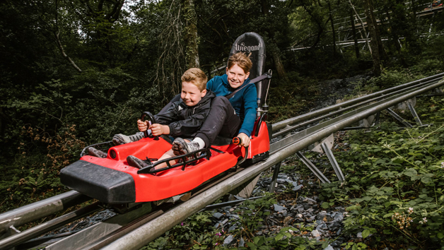 Fforest Coaster Ride for Two at Zip World, Wales