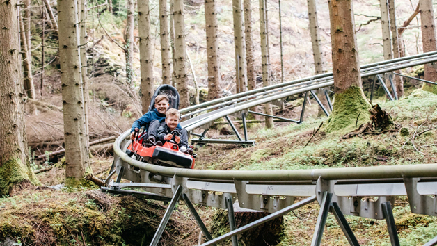 Fforest Coaster Shared Ride at Zip World, Wales