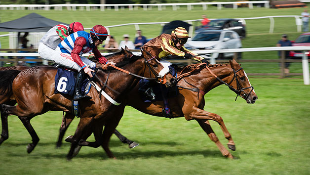 Horse Racing Day at Newcastle Racecourse for Two