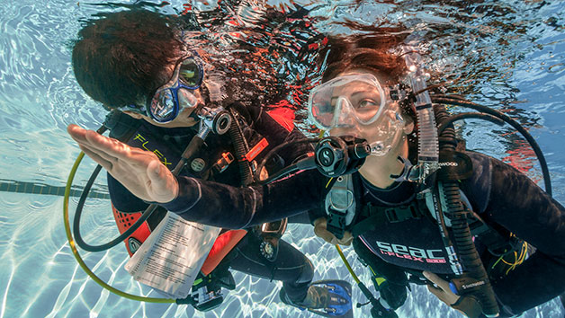 Scuba Diving In London For Two