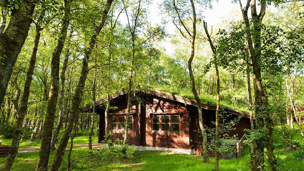One Night Break in a Woodland Cabin at Chevin Country Park Hotel and Spa for Two