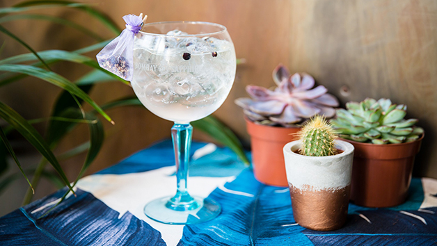 Buy Gin Masterclass with Sharing Platter for Two at Gordon Ramsay's Bread Street Kitchen