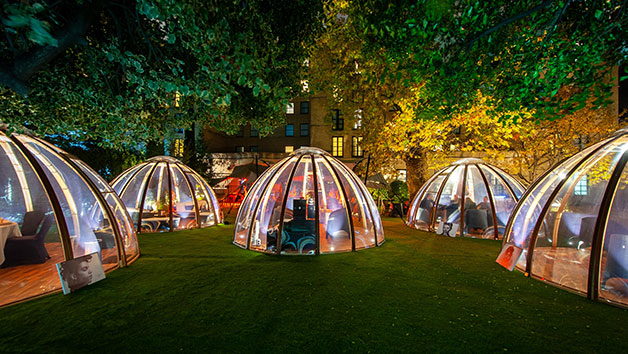 Afternoon Tea with Champagne for Two in The Domes At London Secret Garden Kensington