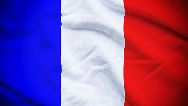Online French Certification Course Level 1  2 And 3 For One Person