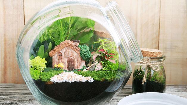 Family Terrarium Workshop At Portos Flowers