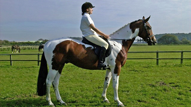 Horseriding At Halsall Riding Centre For Two