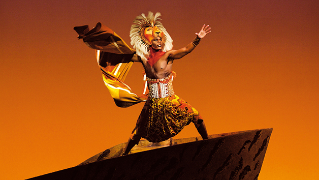 The Lion King Theatre Tickets For Two