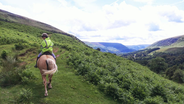 One Hour Horse Riding Experience At Grange Trekking For Two
