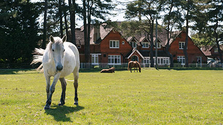 Two Night Hotel Escape for Two at The Beaulieu Hotel, Hampshire