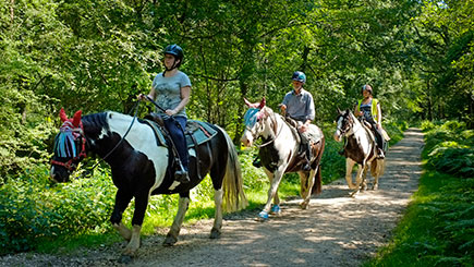 90 Minute Western Trail Ride for Two in the New Forest National Park