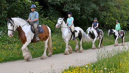 Introduction To Horse Riding In Nottinghamshire