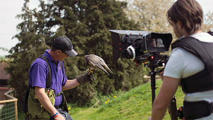 Bird of Prey Photographic Day at Lee Valley Park Farms