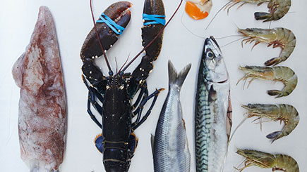 Ultimate Fish and Shellfish at Cookery School in London