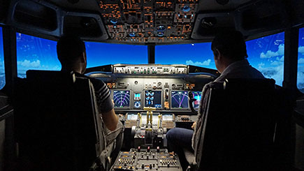 30 Minute Flight Simulator Experience in Lincolnshire
