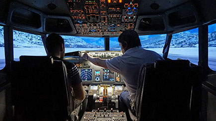30 Minute Boeing 737 Flight Simulator Trip in Newcastle-Upon-Tyne
