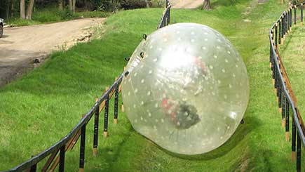 Zorbing for Two in Surrey