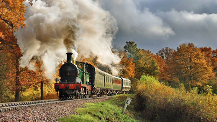 Steam Train Journey on Bluebell Railway for Two and Visit Wakehurst Place