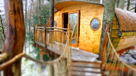 Family Treehouse Experience
