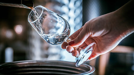 Gin and Vodka Tour and Tasting for Two at Bimber Distillery