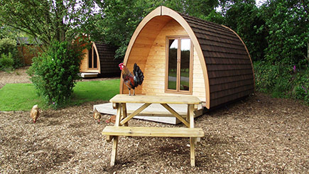One Night Camping Pod Break for Two in Devon