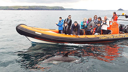 Sealife Safari RIB Boat Trip for Two in Padstow, Cornwall
