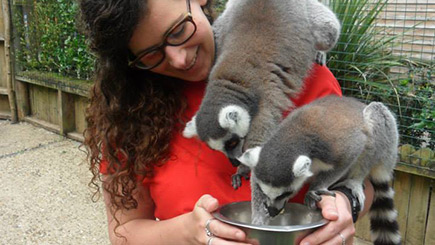 Feed the Lemurs for Two in Hertfordshire