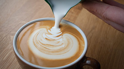 Coffee Barista Taster Course