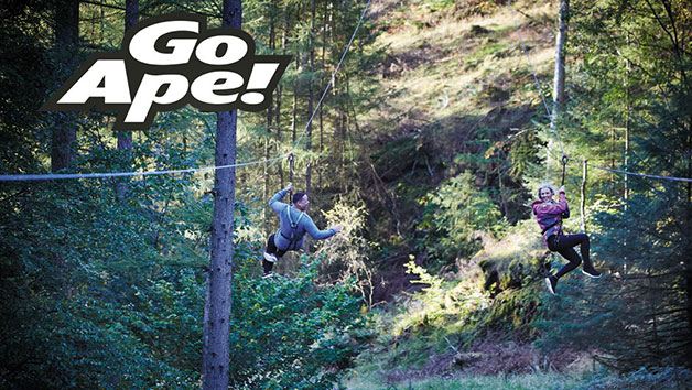 Tree Top Challenge At Go Ape For Two People