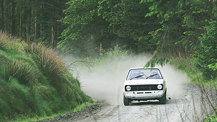 Half Day Forest Rally Experience in Wales