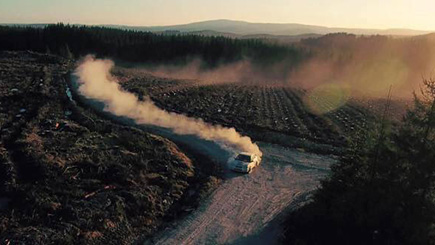 Forest Rally Experience with Hot Ride in Wales for One
