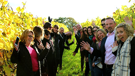 Sussex Vineyard and Cheese Coach Tour with Lunch and Wine Tasting
