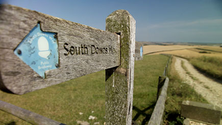 Half Day South Downs Walking Adventure for Two