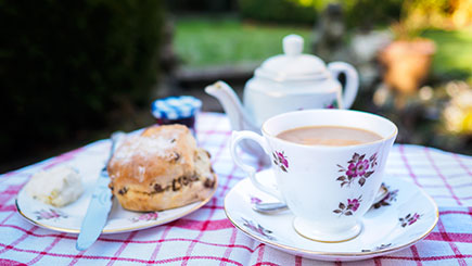 South Downs Ramble and Cream Tea for Two