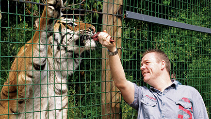 Weekend Big Cat Ranger For A Day At The Big Cat Sanctuary