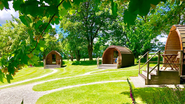 One Night Stay in a Camping Pod for Two in Devon