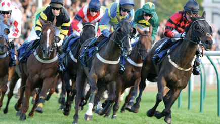 Horse Racing Day at Ffos Las Racecourse for Two