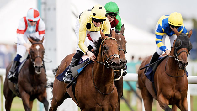 Horse Racing Day At Wolverhampton Racecourse For Two