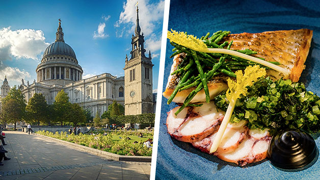 Buy St Paul's Entry and Three Courses with Cocktails at Searcys at The Gherkin for Two