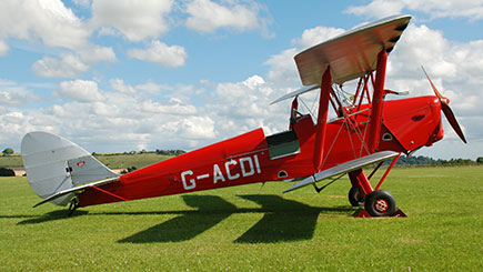 Tiger Moth Tour Of The New Forest