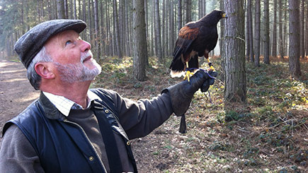 Click to view details and reviews for Introduction To Birds Of Prey With Bb Falconry.