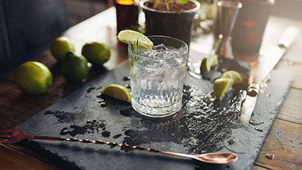 Buy Gin Tasting Evening for One, London