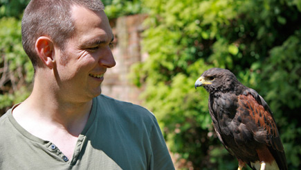Falconry Insight Day