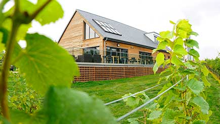 Vineyard Tour, Lunch and Tasting for Two at West Street Vineyard in Essex